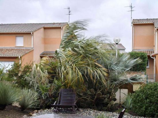 Tempête hivernale - rafales à 120km/h