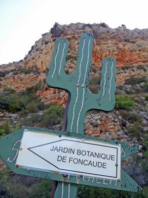 Jardin de Foncaude - Feuilla