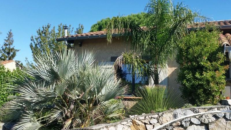 Jardin aloha vue palmiers maison